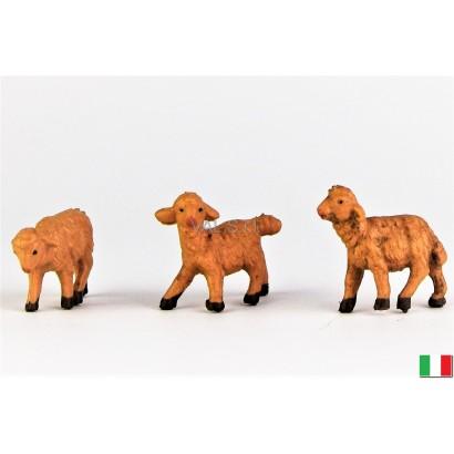 Tris di pecore in diverse...