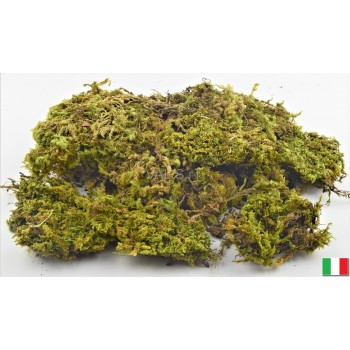 MUSCHIO NATURALE IN BUSTA - 300GR.