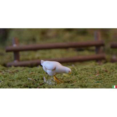 Pollo landi cm 6