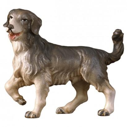 Cane da pascolo Val Gardena...