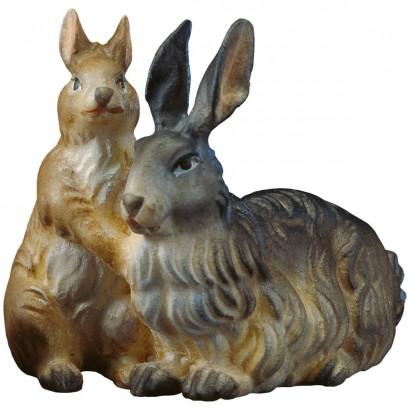 Gruppo di conigli Val...