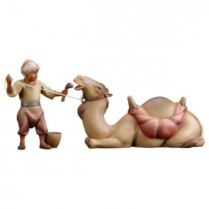 Gruppo del cammello sdraiato