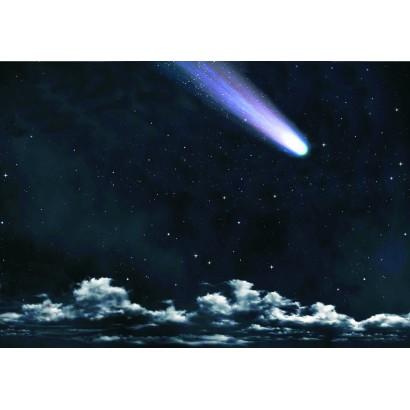 Cielo notturno con stella...
