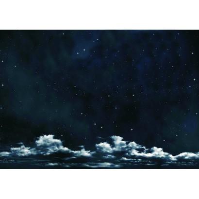 Cielo notturno con stelle...